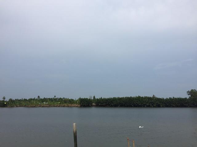 タンジュン・ピアイ・ジョホール国立公園